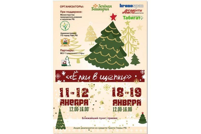 В Уфе пройдет экологическая акция по утилизации новогодних елей «Ёлки в щепки»